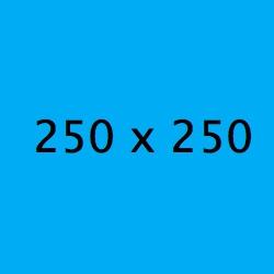 carré: 250 x 250